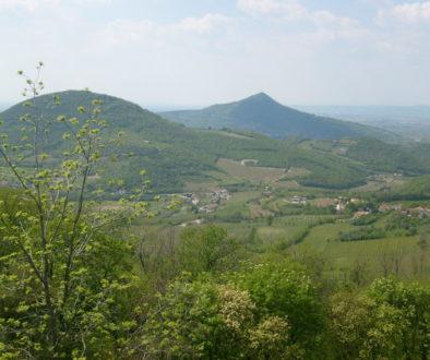 Particolare_dei_Colli_Euganei