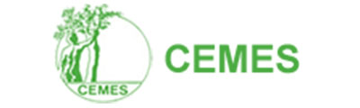 logo av run_0001_cemes